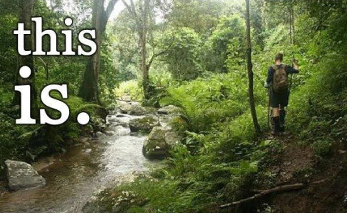a hiker in lush green woods walking next to a creek with the text this is life on top